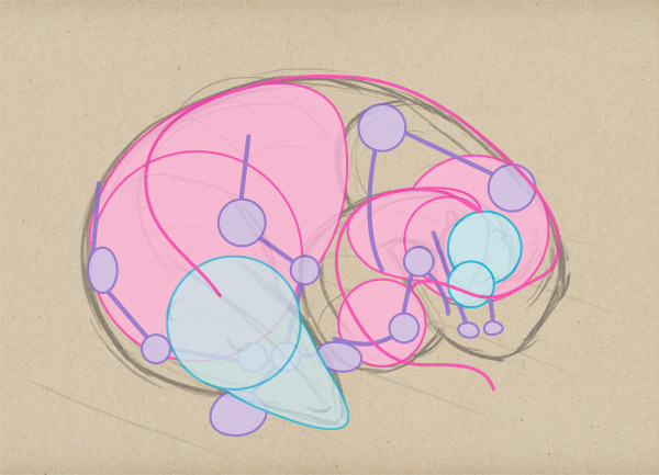 sketch atonomy