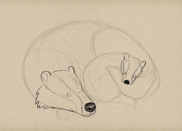 sketch ears