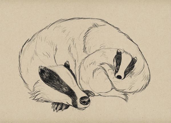 draw fur