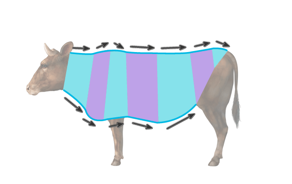 draw a simple cow