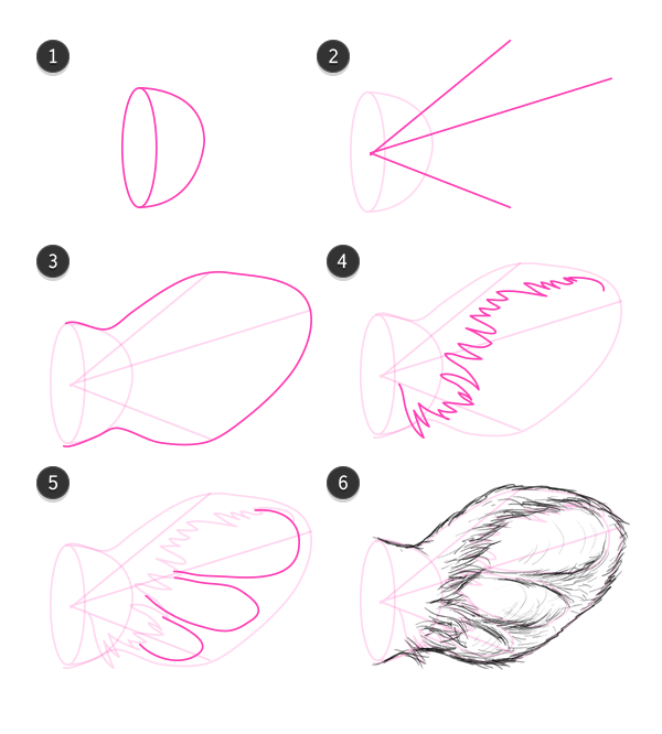 steps how to draw a texas longhorn head
