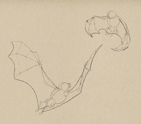 how to draw bat wings 9