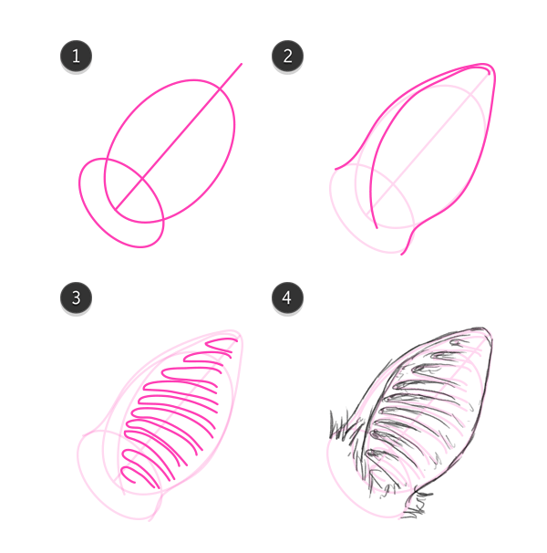 how to draw bat ears step by step megabat