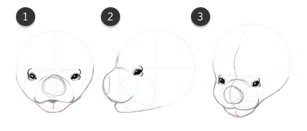 how to draw bat head face 6
