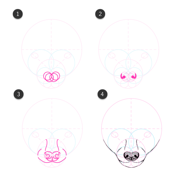 flying fox mouth how to draw