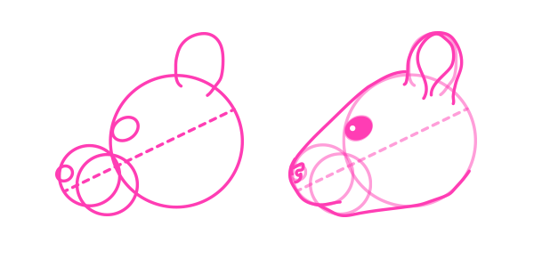 rodents how to draw gray squirrel head