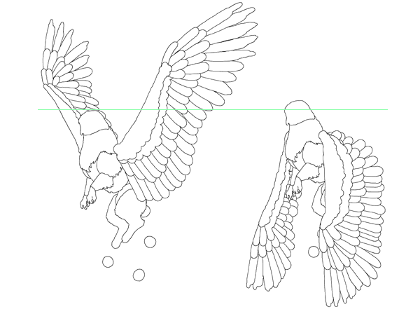 animation animal griffin flight flying wings draw photoshop body 4
