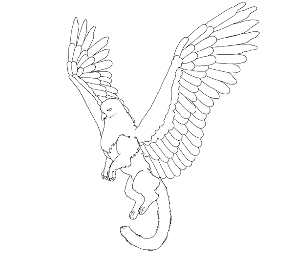 animation animal griffin flight flying wings draw photoshop body lineart 7
