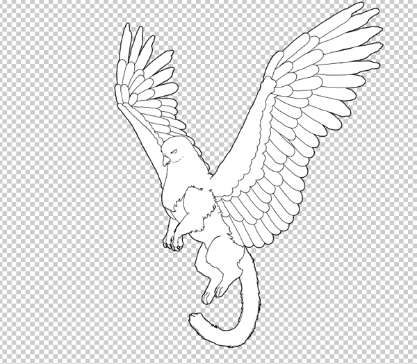 animal animation aéreas griffin asas voadoras desenhar photoshop lineart corpo 10