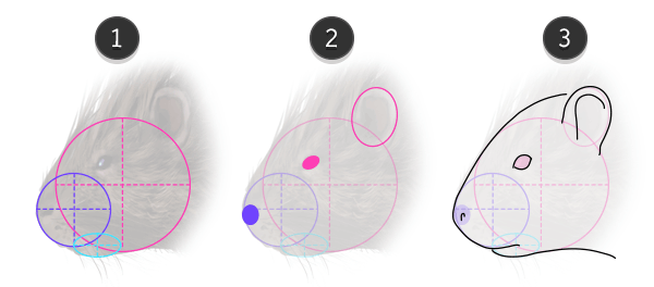 how to draw porcupine head