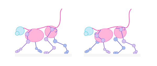 cat pacing gait pace walking animation cycle frames 2