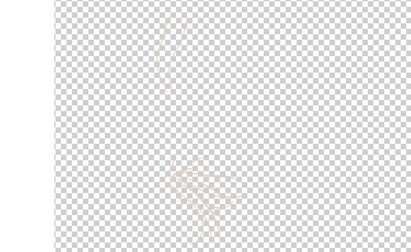 photoshop animation whiskers 2