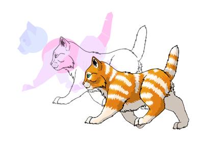 Walking kitten prev