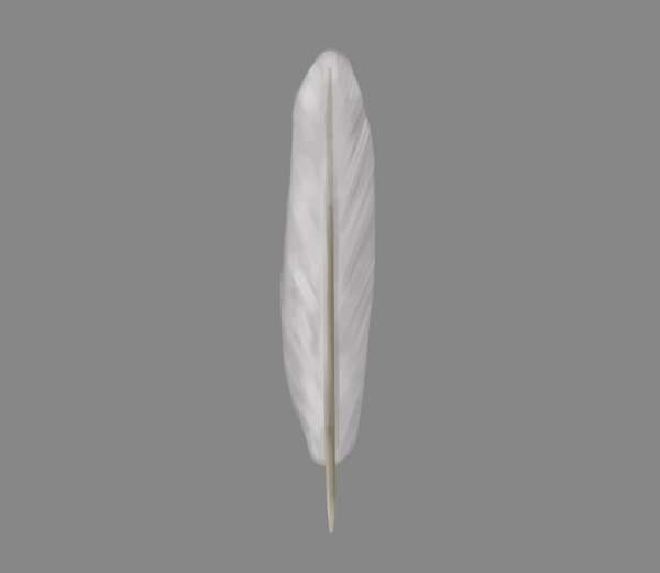 how to paint draw feathers photoshop 4