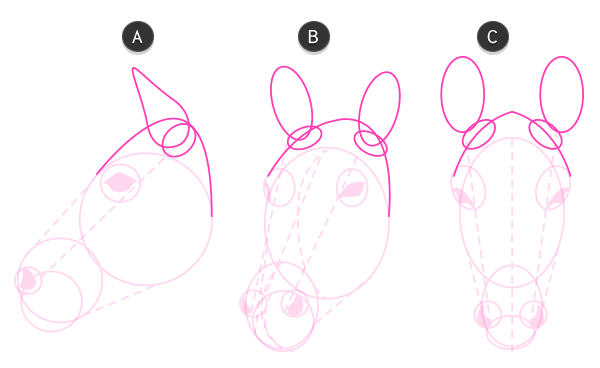 how to draw zebra head 3