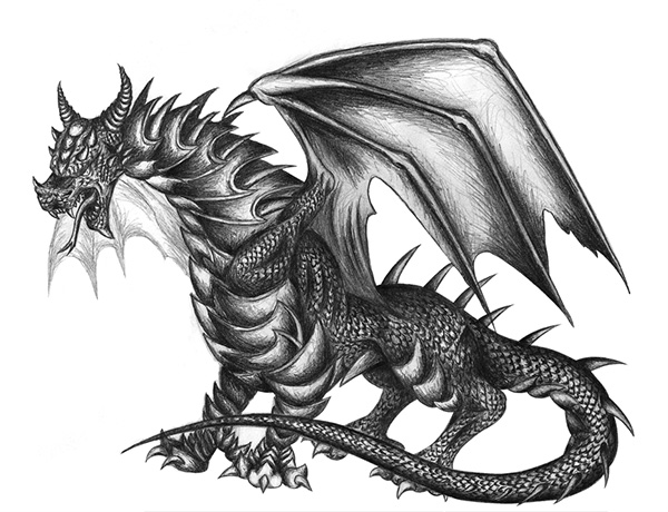 pencil drawing dragon first
