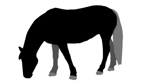 how to draw horse outline base