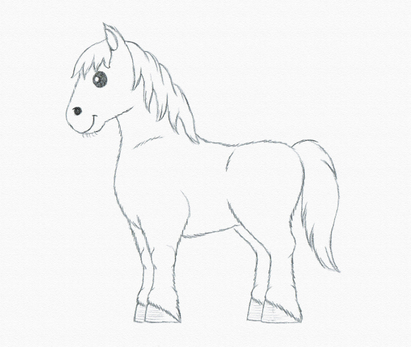 draw pony details hair beginner