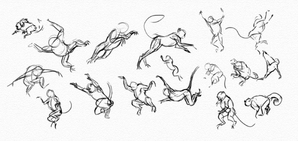 practice poses jumping monkeys