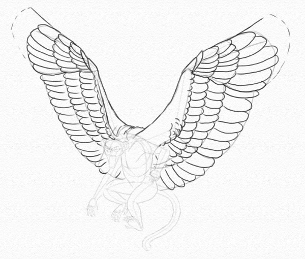 draw wings slotted primaries