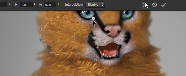 photoshop digital painting no tablet how to create fur warp