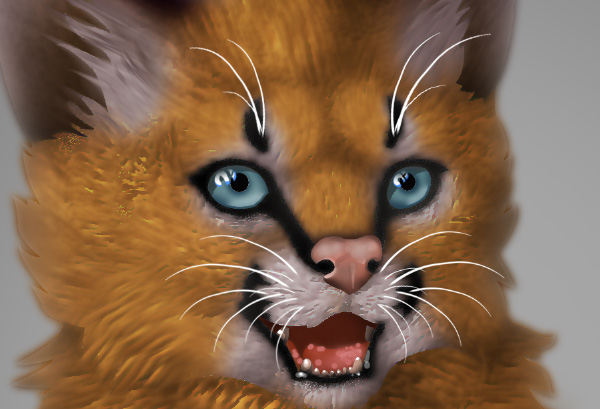 photoshop digital painting no tablet whiskers done