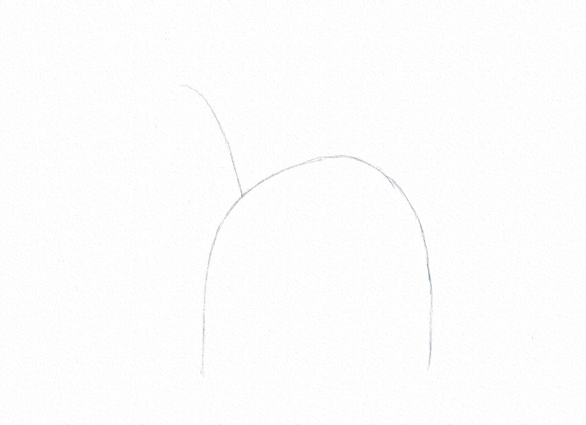 how to start a drawing