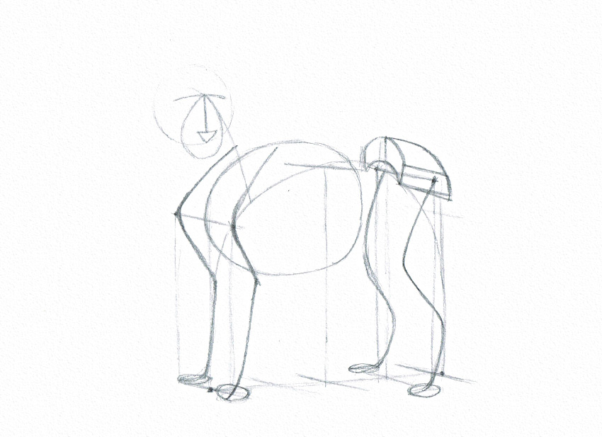 How to draw animal hips animal hips drawing