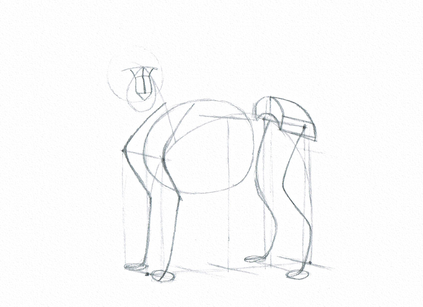 lion nose drawing