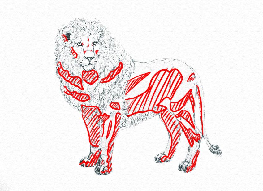 How to shade animals traditionally