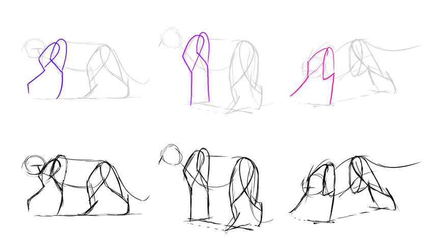 how to draw lion forelimbs