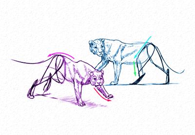 How To Draw Furries Aka Anthropomorphic Characters