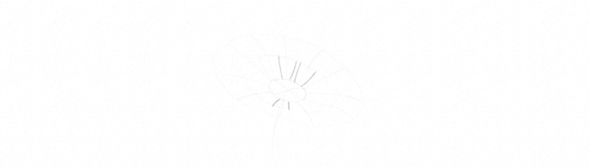 how to draw daisy petals in perspective