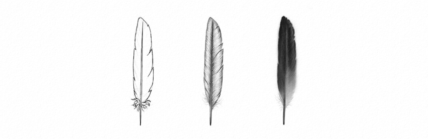 How to Draw Feathers