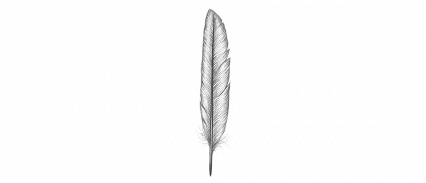 how to shade detailed feather