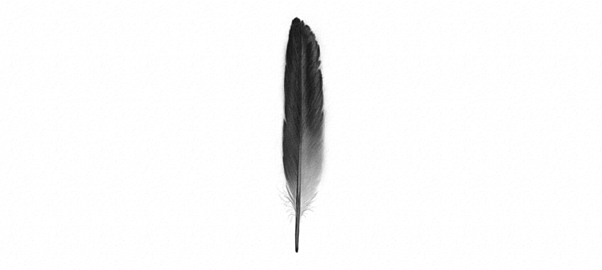 how to draw a realistic feather with pencils