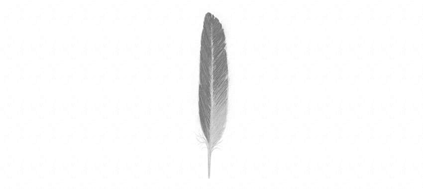 how to color feather in black and white