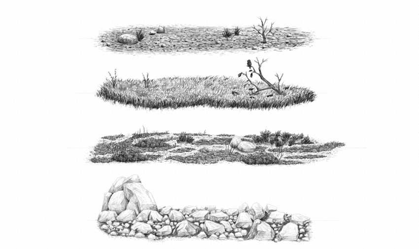How to Draw Grass, Ground, and Rocks