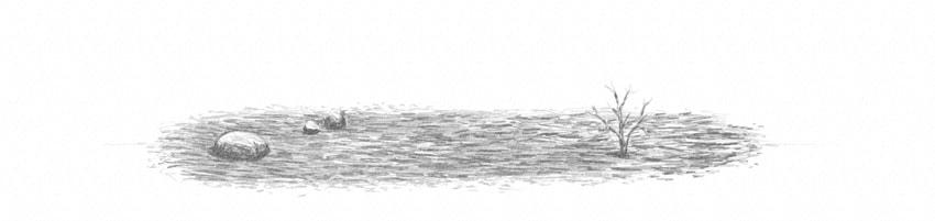 how to shade single stone soft pencil