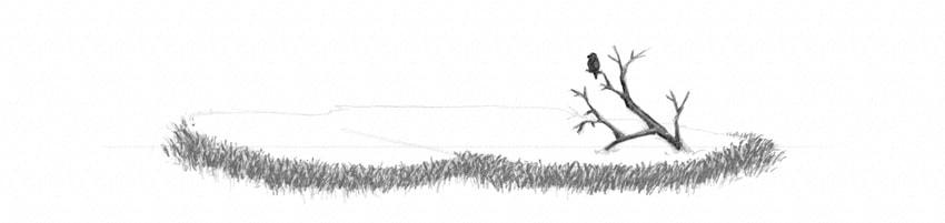 Bagaimana Menggambar Rumput Tanah Dan Batu