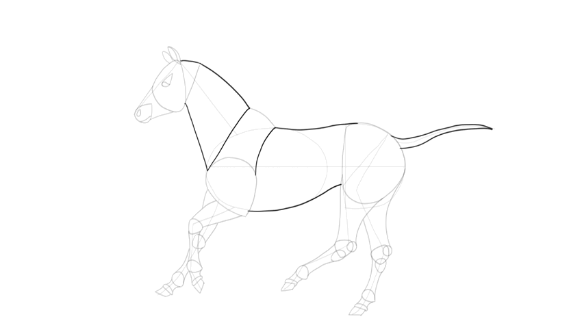 how to draw horse body