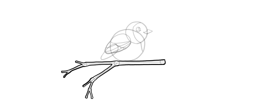 how to draw a simple branch quickly