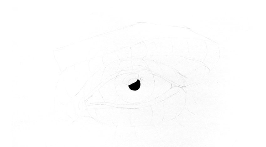 how to draw a pupil