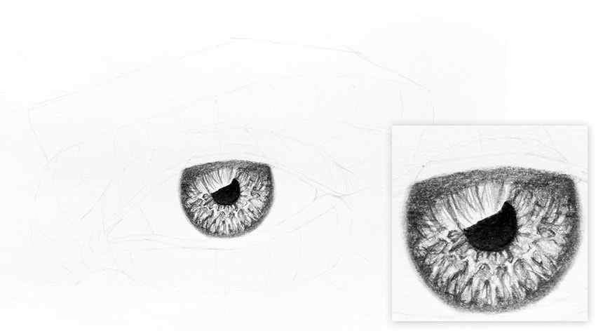 how to draw eye reflection