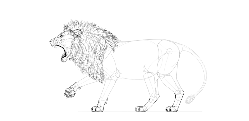 How to Draw a Roaring Lion StepbyStep
