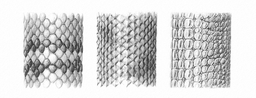 how to draw scales texture with pencils