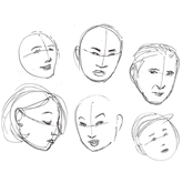 Human Anatomy Fundamentals Basics of The Face