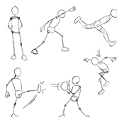 Human Anatomy Fundamentals Balance and Movement