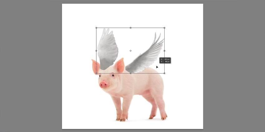 How to Add Wings to a Photo in Adobe Photoshop