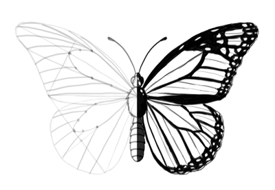 How to draw butterfly preview